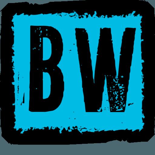 BallyWire Media (2017)